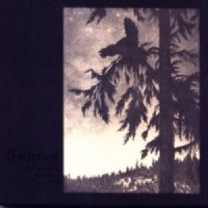 Empyrium - Where at Night the Wood Grouse Plays cover art