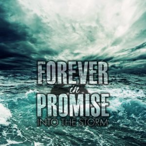 Forever In Promise - Into the Storm cover art