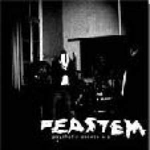 Feastem - Psychotic Excess cover art