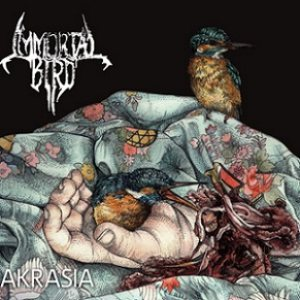 Immortal Bird - Akrasia cover art