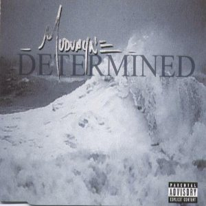 Mudvayne - Determined cover art