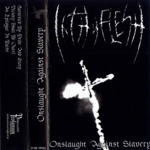 InThyFlesh - Onslaught Against Slavery cover art