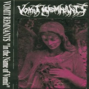 Vomit Remnants - In the Name of Vomit cover art