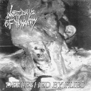 Last Days of Humanity - Defleshed by Flies / Untitled cover art