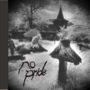 No Pride - Stereotypes cover art