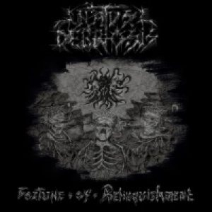 Natus Deprosis - Fortune of Relinquishment cover art