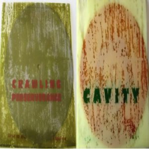 Cavity - Crawling / Perseverance cover art