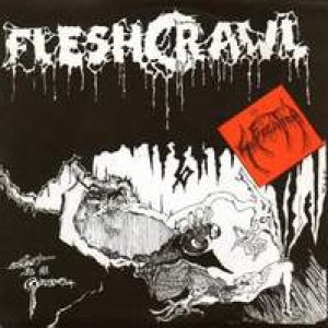 Fleshcrawl - Lost in a Grave cover art