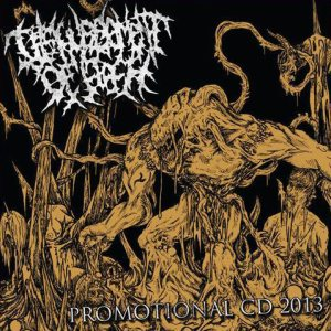 Disfigurement Of Flesh - Promotional CD 2013 cover art
