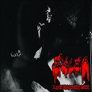 Sulsa / Vulgaroyal Bloodhill - United and More Strong / I Shit on My Pants Again cover art
