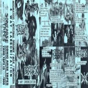 Mixomatosis / Intestinal Disgorge - 4 Way Carbonization cover art