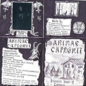 Animae Capronii - Bizzarre Signs of Capronii cover art