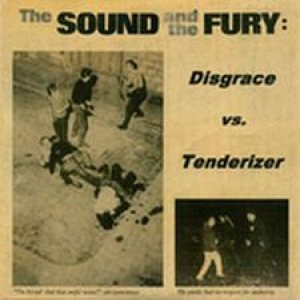Disgrace - The Sound and the Fury cover art
