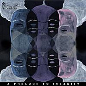 Structural Disorder - A Prelude to Insanity cover art