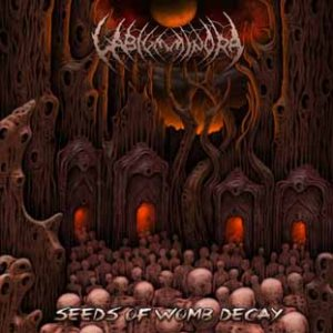 Labium Minora - Seeds of Womb Decay cover art