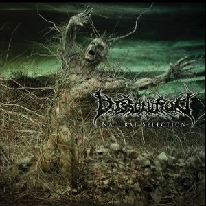 Dissolution - Natural Selection cover art