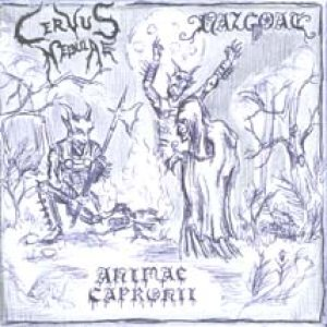 Animae Capronii - Cervus Nebulae / Nazgoat / Animae Capronii cover art