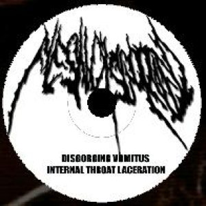 Flesh Disgorged - Promo-demo-2005 cover art