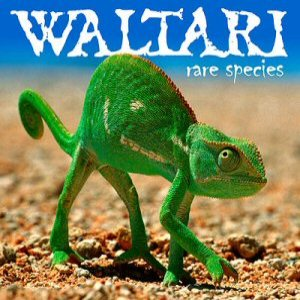 Waltari - Rare Species cover art