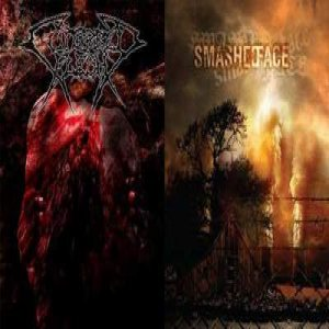 Cutterred Flesh / Smashed Face - Cutterred Flesh / Smashed Face cover art