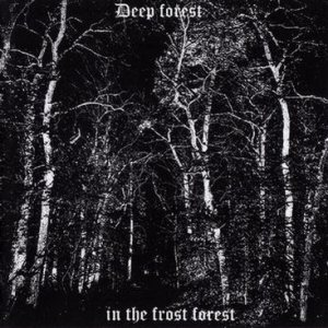 Deep Forest - In the Frost Forest cover art