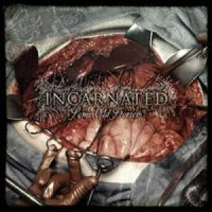 Incarnated - Some Old Stories cover art