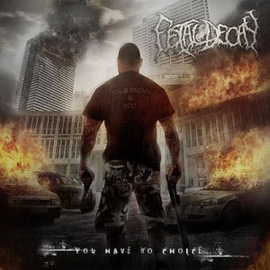 Fetal Decay - You Have No Choice cover art