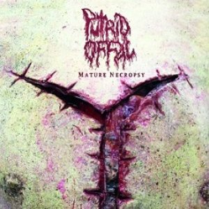Putrid Offal - Mature Necropsy cover art