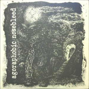 Agoraphobic Nosebleed - Directions in Music by Cattle Press / Agoraphobic Nosebleed cover art