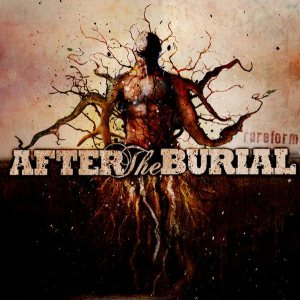 After the Burial - Rareform cover art