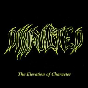 Dissimulated - The Elevation of Character cover art