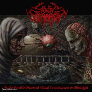 Last Sacrament - On the Possible Preserved Visual Consciousness in Blindsight cover art
