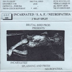 Incarnated / Neuropathia - 3 Way Split cover art