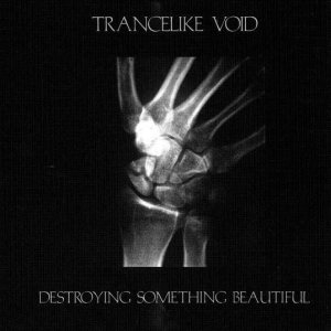Trancelike Void - Destroying Something Beautiful cover art