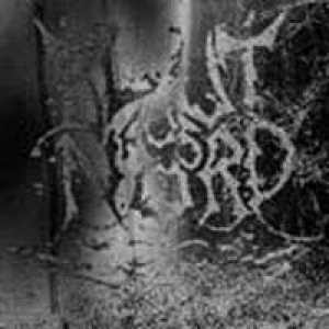 Blut Aus Nord - The Work Which Transforms God cover art