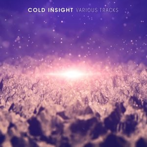 Cold Insight - Various Tracks cover art