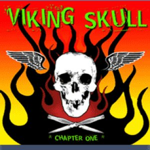 Viking Skull - Chapter One cover art
