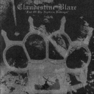Clandestine Blaze - Fist of the Northern Destroyer cover art