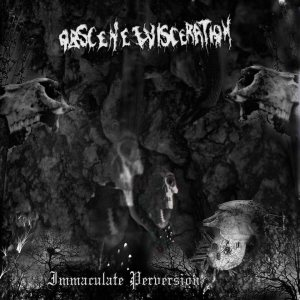 Obscene Evisceration - Immaculate perversion cover art
