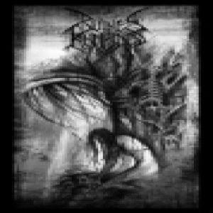Ruines Humaines - Ruines Humaines cover art
