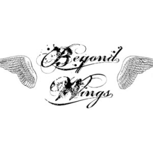 SATD - Beyond Wings cover art