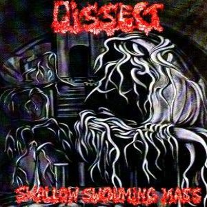 Dissect - Swallow Swouming Mass cover art