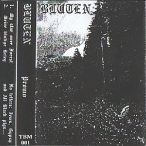 Bluten - Promo 2001 cover art