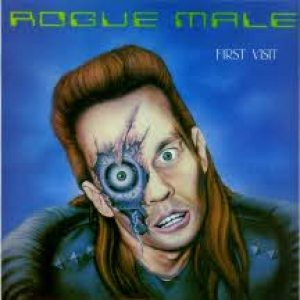 Rogue Male - First Visit cover art