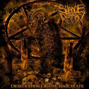 Silence Shall Return - Desecration of the Immaculate cover art