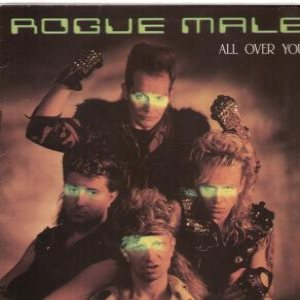Rogue Male - All Over You cover art