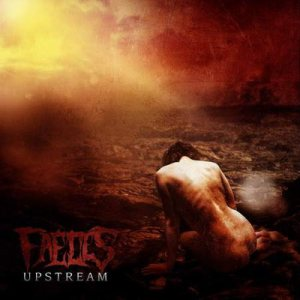 Faeces - Upstream cover art