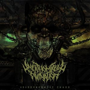 Unfathomable Ruination - Idiosyncratic Chaos cover art