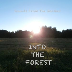 Sounds From The Marshes - Into the Forest EP cover art