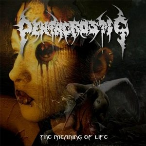 Pentacrostic - The Meaning of Life cover art